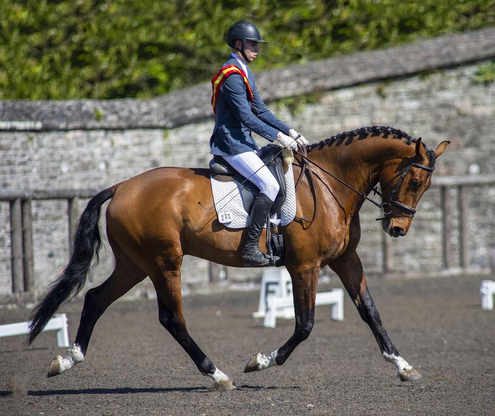 Dressage riders delighted to return to Necarne Castle